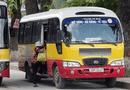 Tin trong nước - Đề xuất cho xe buýt dưới 17 chỗ được hoạt động như taxi trong đô thị