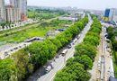 Tin trong nước - Bí thư Hà Nội nói về việc di dời, chặt hạ 1.300 cây xanh trên đường Phạm Văn Đồng