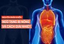 Sức khoẻ - Làm đẹp - 5 chuyên gia lý giải tình trạng ngũ tạng bị nóng và cách khắc phục đơn giản bằng thực phẩm