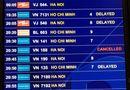 Kinh doanh - Để chậm, hủy chuyến bay tăng mạnh, 3 hãng hàng không bị nhắc nhở