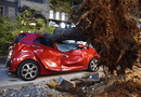 Tin trong nước - Cây bật gốc đè bẹp ôtô ở trung tâm TP Hồ Chí Minh