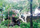 Tin trong nước - Bão số 2 khiến 12 người chết và mất tích