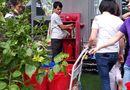 """Chung cư thời hiện đại - Bài 6: Cư dân """"khát nước"""" ngay giữa Thủ đô"""