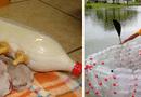 Đời sống - Bỏ túi các cách tái chế chai nhựa bỏ đi thành vật dụng hữu ích