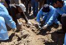 Tin thế giới - Iraq tìm thấy 2.100 thi thể dân thường sau giải phóng Mosul