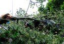 1 người chết, một mất tích trước bão số 10 ở Thừa Thiên Huế