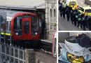 Tin thế giới - Tấn công khủng bố trên tàu điện ngầm ở London