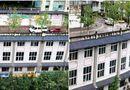 Đời sống - Đất chật người đông, Trung Quốc xây hẳn đường đi trên nóc nhà 5 tầng