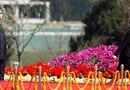 Tin thế giới - Lý giải nguyên nhân ông Kim Jong-un đưa em gái vào Bộ chính trị