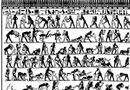 Tin thế giới - Đồng tính luyến ái thời Ai Cập cổ đại