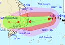 Tin trong nước - Chuyên gia khí tượng nhận định về kịch bản xảy ra với bão số 12