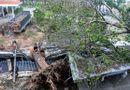 Tin trong nước - Đường phố Nha Trang vẫn ngổn ngang sau cơn bão lịch sử