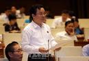 Tin trong nước - Sân bay Long Thành: Vẫn thiếu dữ liệu về quy mô đất cần thu hồi và tổng mức bồi thường