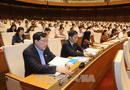 Tin trong nước - Quốc hội thông qua dự án Luật Lâm nghiệp