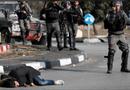 Tin thế giới - Hàng trăm người Palestine thương vong trong vụ biểu tình về vấn đề Jerusalem