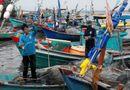 Tin trong nước - Kiên Giang: Vẫn còn hơn 200 nghìn dân, 1.000 tàu thuyền cần di dời trước bão 16