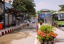 Tin tức - Trạm xe buýt 8,5 tỷ đồng ở TP. Hồ Chí Minh có gì hấp dẫn?