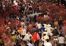 Tin tức - Dân mạng đua nhau chia sẻ ảnh Tết xưa khiến không khí ngày Tết rộn ràng hơn