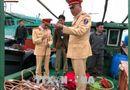 Tin tức - Quảng Ninh: Bắt giữ hàng loạt tàu khai thác thủy sản trái phép