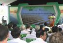 Tin tức - Khởi công nhà máy điện mặt trời với mức đầu tư 800 tỷ đồng