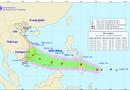 Tin trong nước - Bão giật cấp 10 hướng Biển Đông, TP Hồ Chí Minh chủ động ứng phó