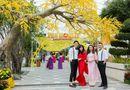 """Đời sống - Nhiều màn trình diễn nghệ thuật đặc sắc tại lễ hội """"Mai vàng sắc xuân"""" Sun World Danang Wonders"""