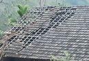 Tin tức - Mưa đá, lốc xoáy ở Nghệ An khiến nhiều nhà dân tốc mái