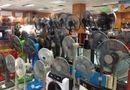 Tin tức - Kinh nghiệm chọn mua quạt điện cho những ngày hè nắng nóng