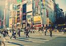 Tin thế giới - Góc khuất của xã hội Nhật Bản: Những căn bệnh tâm lý ám ảnh đến chết