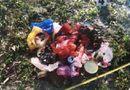 Tin tức - Vụ ''trấn yếm'' mộ bằng quần lót sơn đỏ ở Huế: Đã xác định được nghi phạm