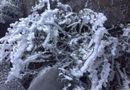 Tin tức - Rét nàng Bân, tuyết phủ trắng đỉnh Fansipan