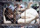 Tin thế giới - Bố nhốt con đẻ trong chuồng sắt chật hẹp suốt 26 năm
