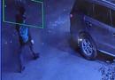 Tin tức - Xác định được kẻ tình nghi đập vớ kinh ô tô, trộm tài sản ở Sa Pa