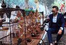 """Tin tức - Choáng ngợp bộ sưu tập chim """"khủng"""" giá 10 tỷ đồng của đại gia Việt"""