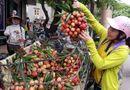 Tin tức - Thực hư thông tin vải thiều Bắc Giang 3.000 đồng/kg, nông dân phải đổ xuống sông