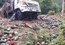 Tin tức - Video: Xe tải chở 1,5 tấn dưa hấu lật thảm khốc trên đèo Tà Cơn