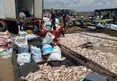 Tin tức - 1.500 tấn cá chết trên sông La Ngà ở Đồng Nai do thiên tai