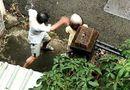 Tin tức - Video: Phẫn nộ cảnh con trai liên tục hành hung mẹ già