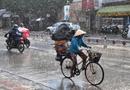 Tin tức - Chiều tối nay (6/7), Hà Nội đón mưa rào và dông