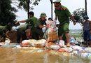 Tin tức - Kịp thời đắp gần 1km đê ở Hòa Bình, ngăn nước tràn xuống ngoại thành Hà Nội