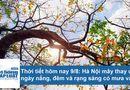 Tin tức - Dự báo thời tiết hôm nay 9/8: Hà Nội ngày nắng nóng, mưa rào về đêm