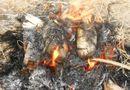 """Tin tức - Nướng vịt ăn trưa người nông dân làm """"cháy"""" mất 88,2 triệu đồng"""