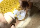 Tin tức - TP HCM: Dùng keo dán xăm lốp ô tô để làm hàng trăm bao cao su rởm