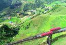 Đời sống - Mùa thu về, lên ngay Fansipan ngắm ruộng bậc thang đã nức thơm hương lúa