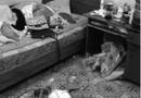 Tin tức - Chủ nhà ngán ngẩm khi nữ sinh thuê trọ sống chung... với rác