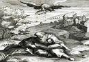 Tin thế giới - Những vụ tử vong kỳ lạ nhất lịch sử