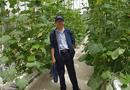 Cần biết - Kinh nghiệm và góc nhìn được đúc kết từ thực tiễn trong việc sản xuất, kinh doanh sản phẩm nông nghiệp công nghệ cao