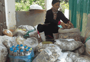 Cần biết - Vị lương y dân tộc Dao với bài thuốc nam chấm dứt chứng đau nhức xương khớp