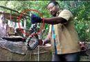 Tin tức - Video: Rắn có 2 màu đen trắng bí ẩn xuất hiện ở Ấn Độ