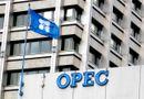 Tin tức - Qatar tuyên bố sẽ rút khỏi OPEC từ đầu năm sau